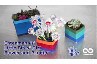 Little Bites® Planter and Flowers DIY
